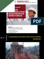 UPN 2013 Rol de Los Ingeniero Civiles en Los Proyectos Estructurales