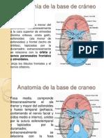 Tumores de Base de Craneo y Senos Paranasales