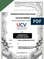 ASAMBLEA DE  NACIONES UNIDAS 4.docx
