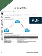 1.Using NetSim