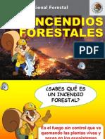 Presentacion_Incendios_Forestales_2012