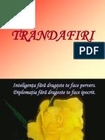 Flory Trandafir i