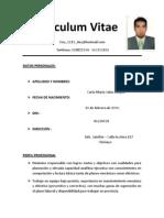 Curriculum Vitae Mario Salas Norte