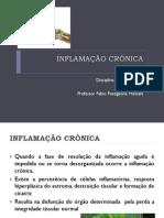 Patologia Geral aula 07 INFLAMAÇÃO CRÔNICA