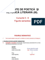 C05_06_Teoria literaturii_2011