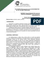 Resumo Expandido Mpu Modelo 2013 2 (Revisado Carlos)