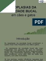 Neoplasias Na Cavidade Bucal