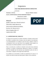 TEORIA  Y PRÁCTICA EN RESOLUCION DE CONFLICTOS