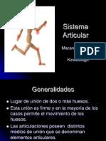 SB Clase 4 Sistema Articular