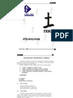 pulsologia3