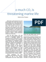 Too much CO2 is threatening marine life