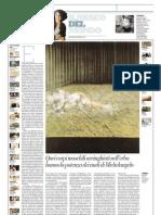 IL MUSEO DEL MONDO 27 - Due figure nell'erba di Francis Bacon (1954) - La Repubblica 30.06.2013