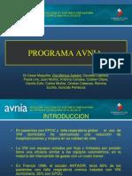 31. Programa AVNIA