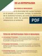 Ramas de La Antropologia