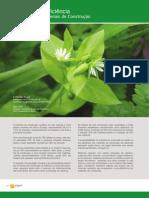 Eco-eficiencia[1] Dossier Univ Minho Port