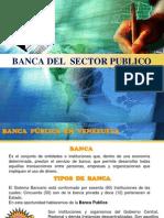 Banca Del Sector Publico
