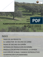 22_09_39_PRODUCCIoN_BOVINA_DE_APTITUD_CaRNICA