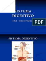 Vias Digestivas i -Deisy