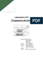 Laboratorio N5