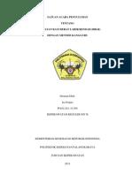 SAP Metode Kangguru