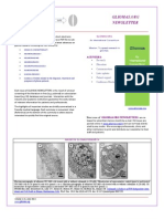 GLIOMAS.ORG NEWSLETTERS 2013 Vol 1 (3)
