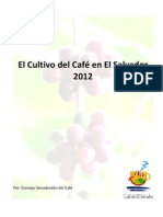 El Cultivo Del Cafe en El Salvador