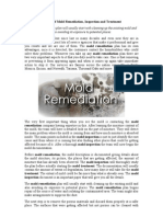 Process of Mold Remediation, Inspection and Treatment