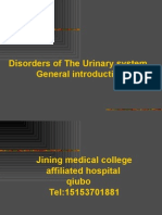 Urinology