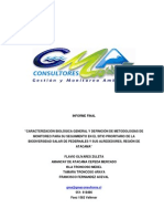 Informe Final Salar de Pedernales.pdf