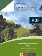 indicadores_amazonas 2009 .pdf
