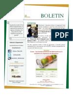 Boletin Año 5 No. 6