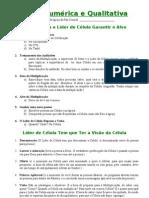 Visão Numérica e Qualitativa-3.doc