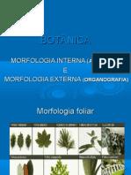 Historia Da Botanica