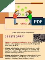 Gripa USMF Mod