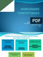 HABILIDADES CONCEPTUALES