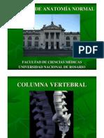 02 Columna Vertebral