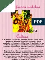 Cultura función simbólica, Comunicacion