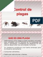 Plagas