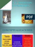 2.8clasedemodelosyteoriasdeenfermeria-