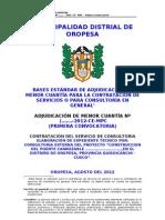 TDR Puentes 01