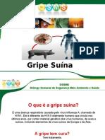 DSSMS     _-_GRIPE_SUÍNA