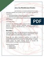 Informe de La Placenta y Las Membranas Fetales