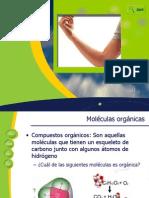 2.-+Biomoleculas+orgánicas+2013