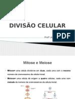 DIVISÃO_CELULAR.pptx