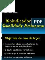 Bioindicadores de Qualidade Ambiental I - Aula I