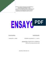 Yonerbys Ensayo