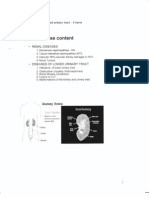 Morphology Lecture