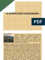 CLASSIFICAÇÃO SUCESSIONAL