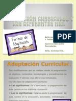Adaptación curricular y los difrentes nee