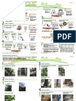 Pictorial Guide For Tree Maintenance To Reduce Tree Risk